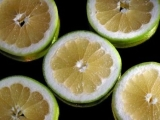 The grapefruit seed extract, natural antibiotic