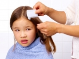 Organic tips for getting rid of lice and nits