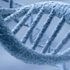 Study: Poverty changes when DNA