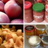 Food preservation: tips to avoid poisoning