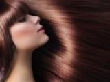 The Diet Allied Hair