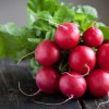 Reasons why you should eat radishes