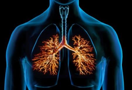 bronchiti-s