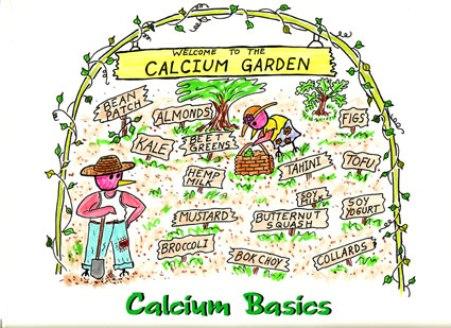 calcium_s