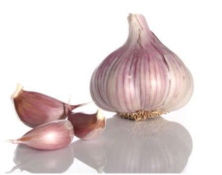 garlic_s