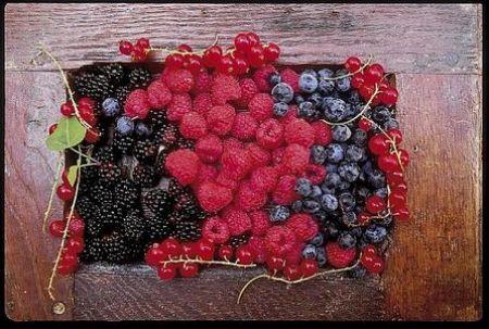 natural-food