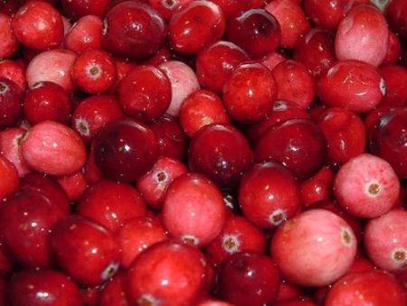 cranberry-item