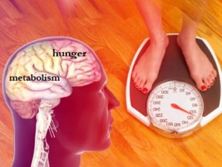fix-obesity