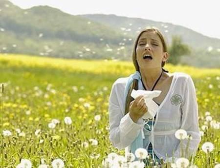 pollen-allergy