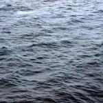 seawater-s