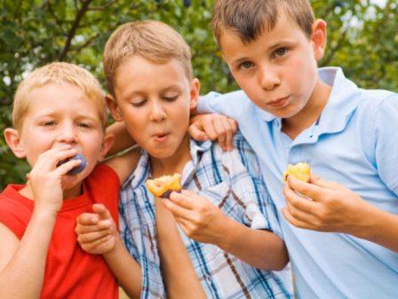 summer-feeding-program